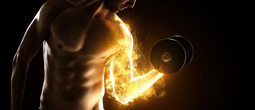 Aminosyror bygger muskler och styrka